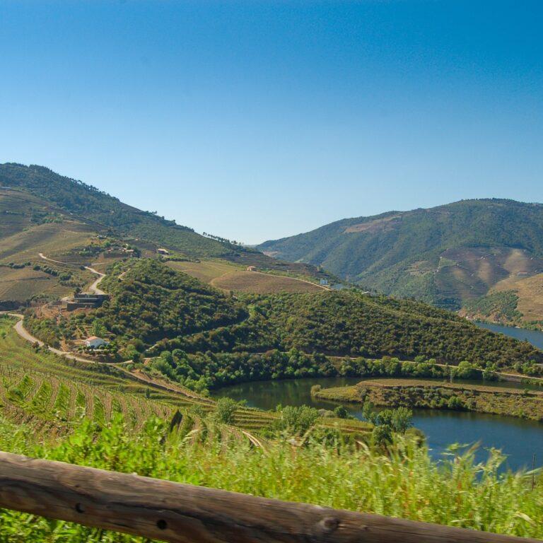 Conheça algumas das estrelas do Vila Galé | Unibanco