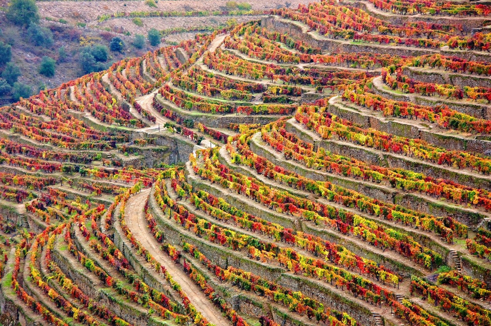 Os 3 melhores destinos de outono | Unibanco