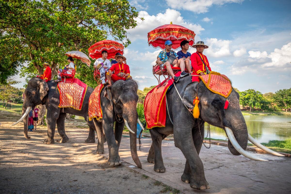 Sustentabilidade: como proteger o planeta enquanto viaja | Unibanco