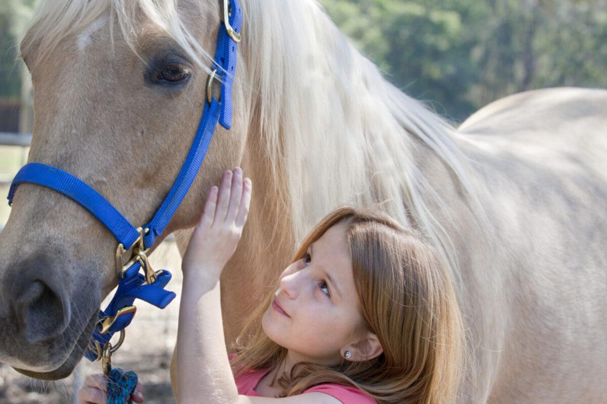 O que fazer às crianças este verão? Eis 9 atividades seguras | Unibanco