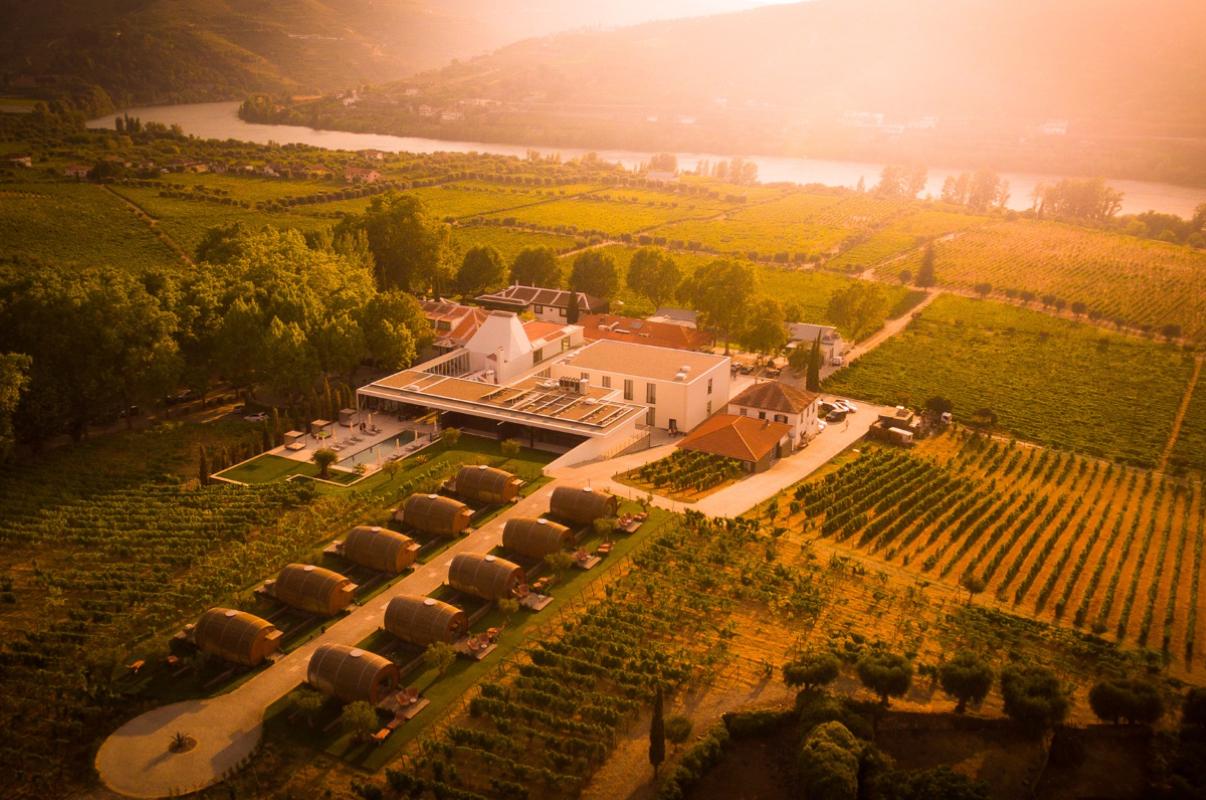 Vindimas 2020: vamos apanhar uvas? | Unibanco